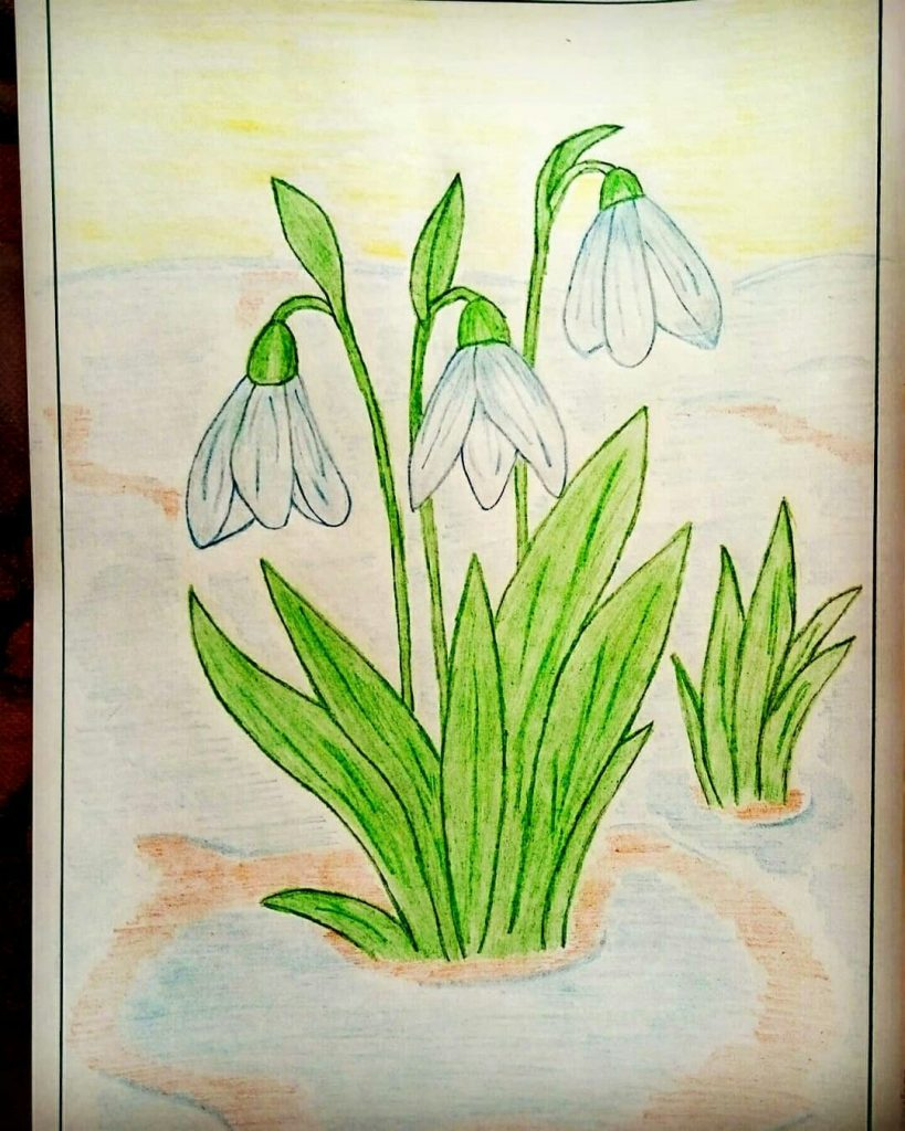 Рисунок карандашом весеннее утро - подборка 26 фото (14)