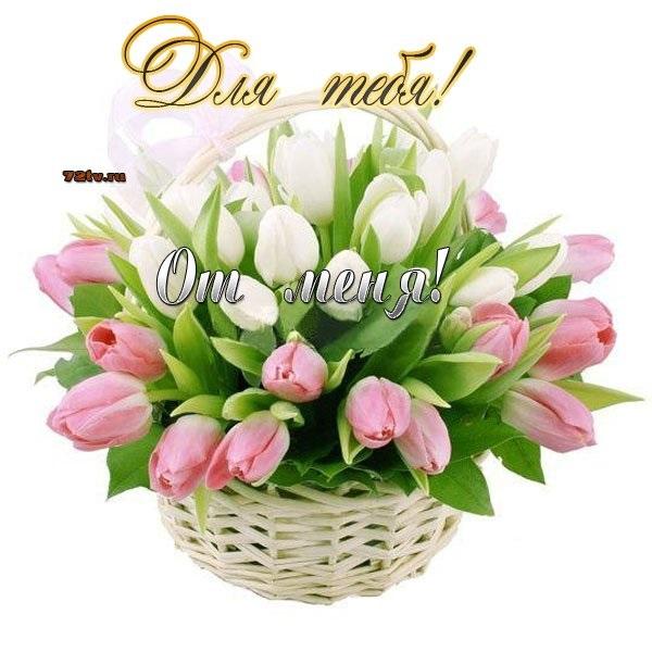 Цветы для любимой девушки, отправить картинку букетик (3)