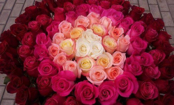 Цветы для любимой девушки, отправить картинку букетик (5)