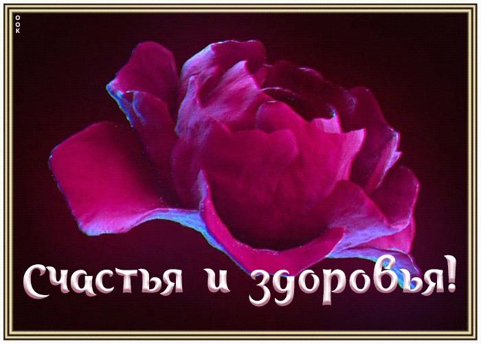 Красивая открытка здоровья и счастья (12)