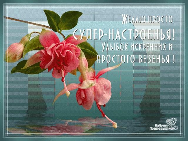 Красивые картинки просто для настроения (13)