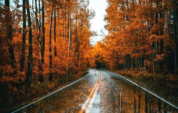 Красивые фото про осень (14)