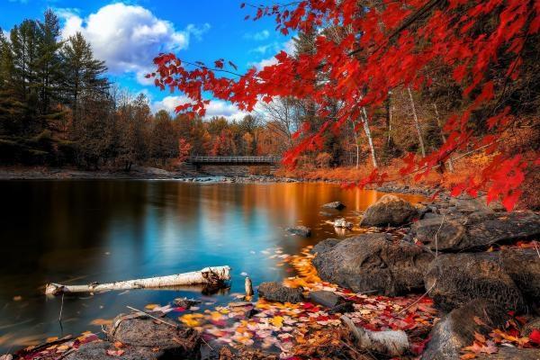 Красивые фото про осень (17)