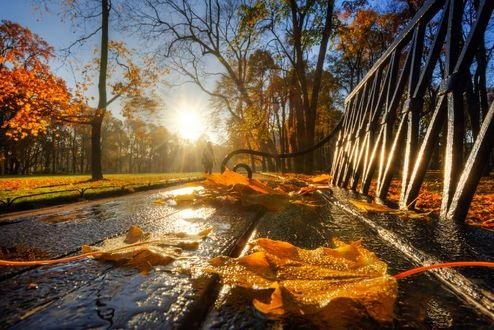 Красивые фото про осень (20)