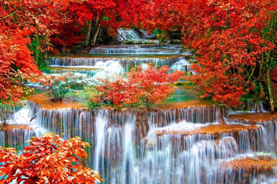 Красивые фото про осень (28)