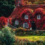 Красивые фото про осень