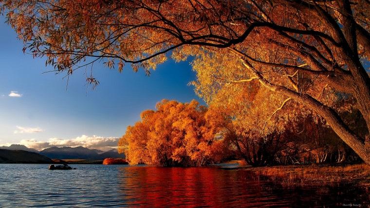 Красивые фото про осень (6)