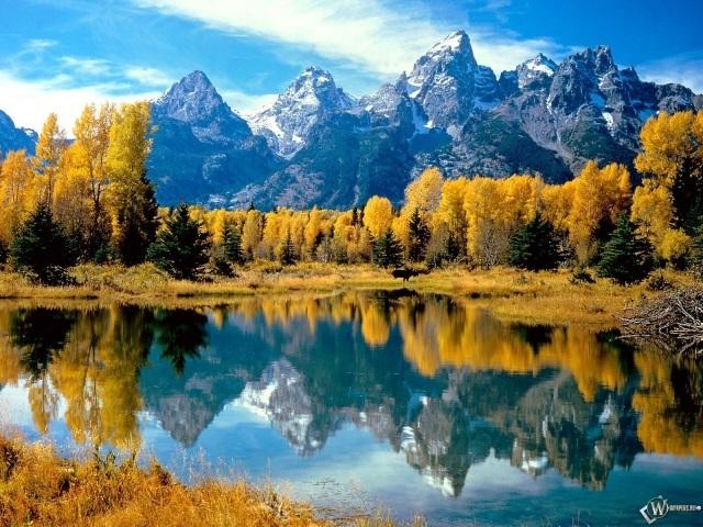 Красивые фото про осень (7)