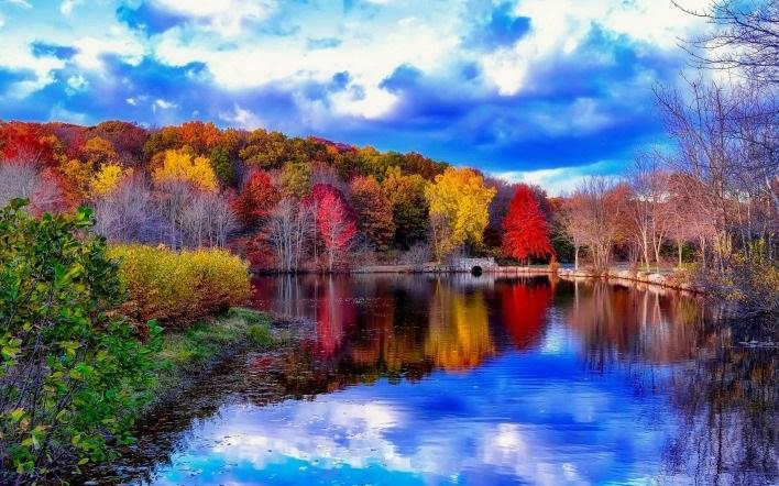 Красивые фото про осень (8)