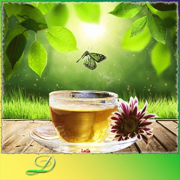 Милые картинки бабочки доброе утро (11)