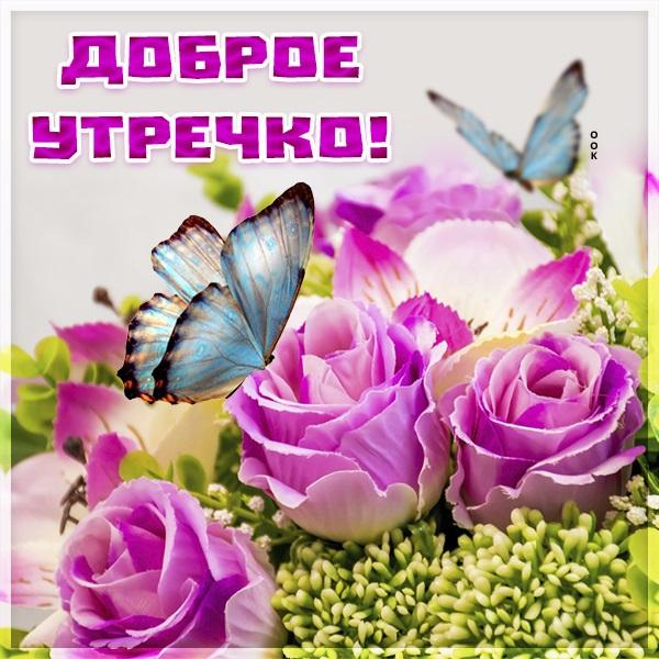 Милые картинки бабочки доброе утро (14)