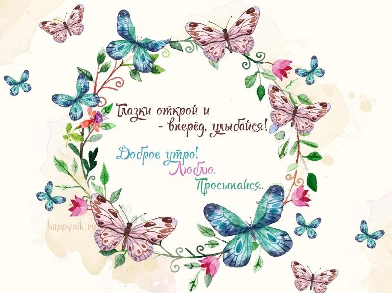 Милые картинки бабочки доброе утро (15)