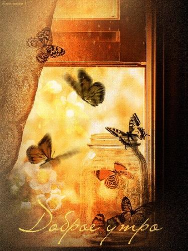 Милые картинки бабочки доброе утро (18)