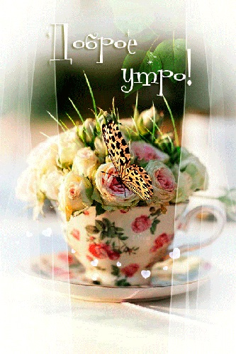 Милые картинки бабочки доброе утро (2)