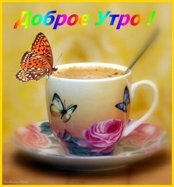 Милые картинки бабочки доброе утро (3)