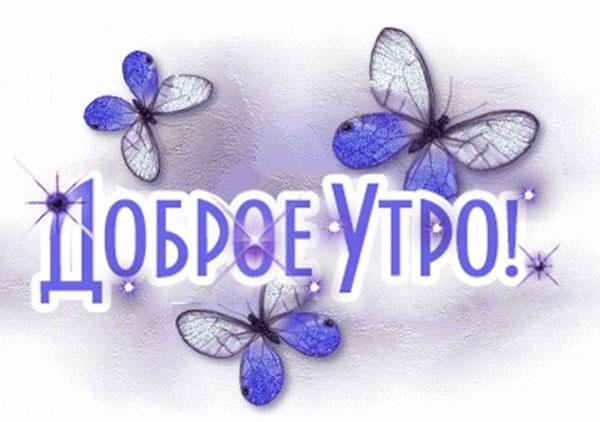 Милые картинки бабочки доброе утро (5)