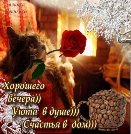 Милые картинки на добрый вечер (3)