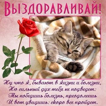 Приятные открытки больному с выздоровлением (1)
