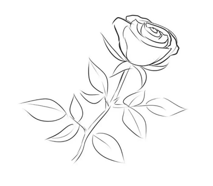 Самые новые рисунки для срисовки за 2021 год (2)