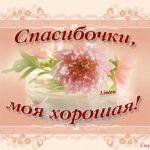 Спасибо подруга картинки красивые