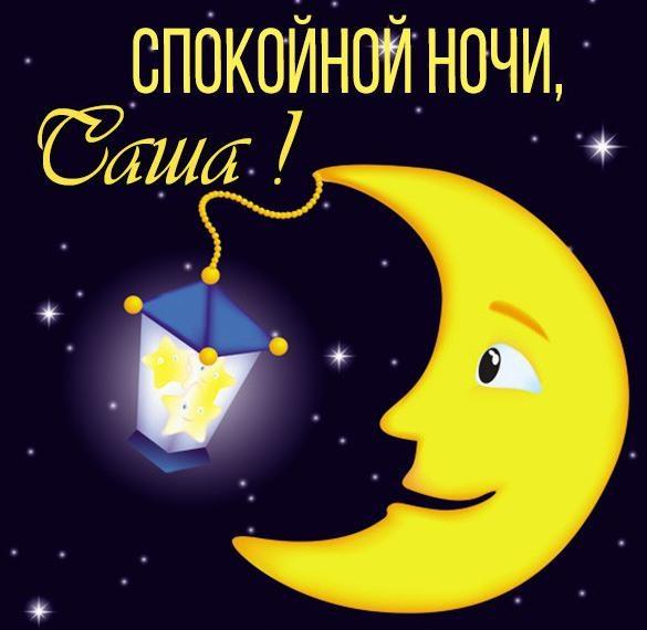 Спокойной ночи Саша картинки (18)