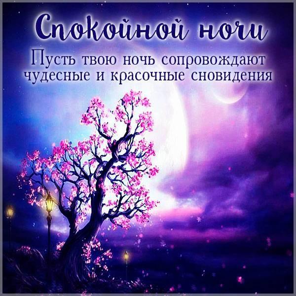 Спокойной ночи Саша картинки (2)