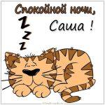 Спокойной ночи Саша картинки