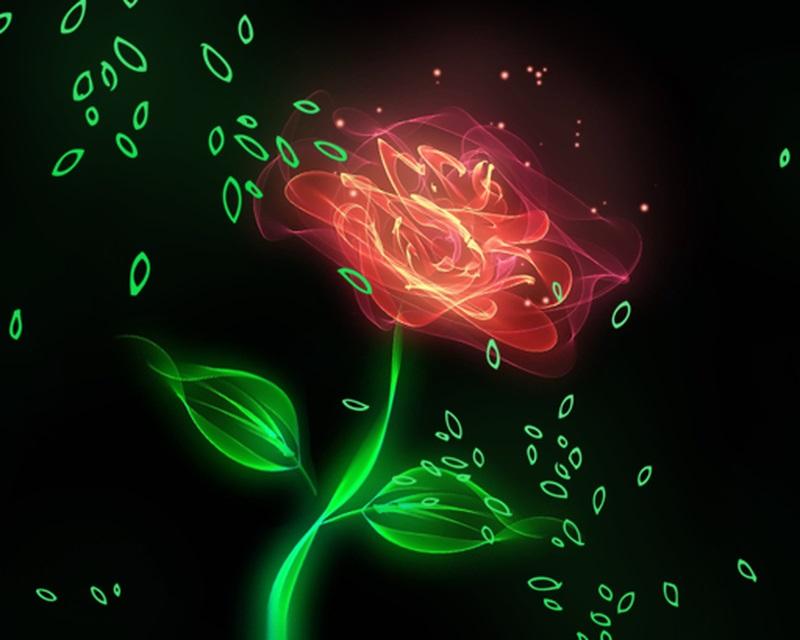 Цветы красивые картинки живые (11)