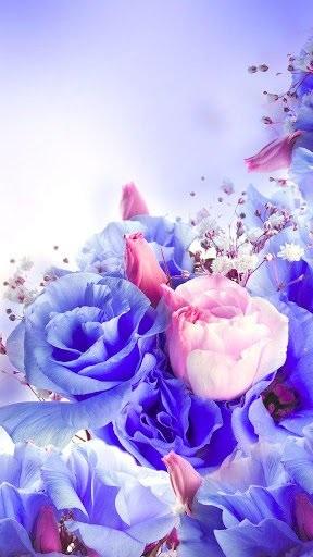 Цветы красивые картинки живые (21)