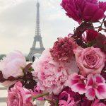 Цветы красивые картинки живые