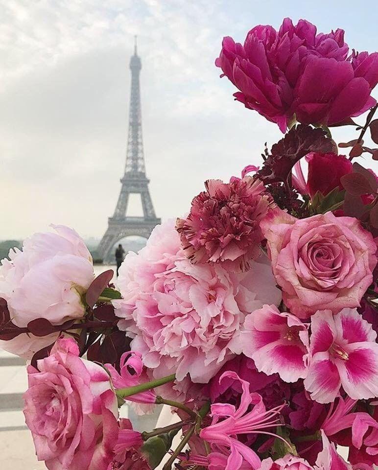 Цветы красивые картинки живые (3)