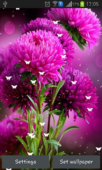 Цветы красивые картинки живые (9)