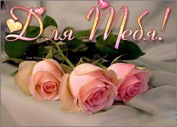 Для тебя розы - самые милые открытки букеты для девушек (1)