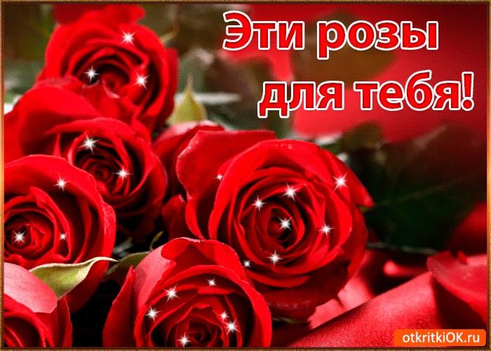 Для тебя розы - самые милые открытки букеты для девушек (11)
