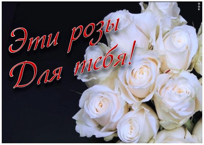 Для тебя розы - самые милые открытки букеты для девушек (22)