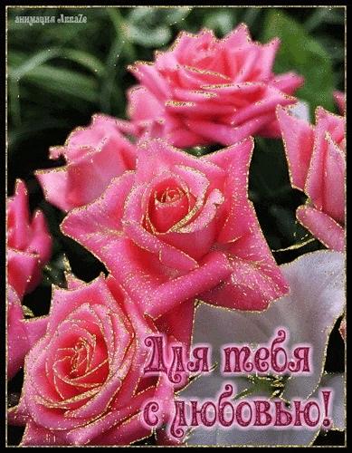 Для тебя розы - самые милые открытки букеты для девушек (23)