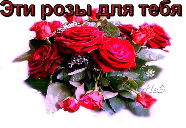 Для тебя розы - самые милые открытки букеты для девушек (24)