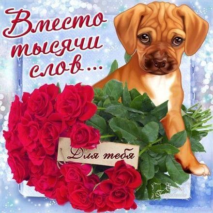 Для тебя розы - самые милые открытки букеты для девушек (3)