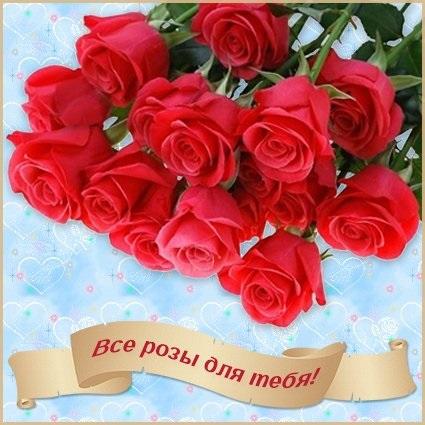 Для тебя розы - самые милые открытки букеты для девушек (7)
