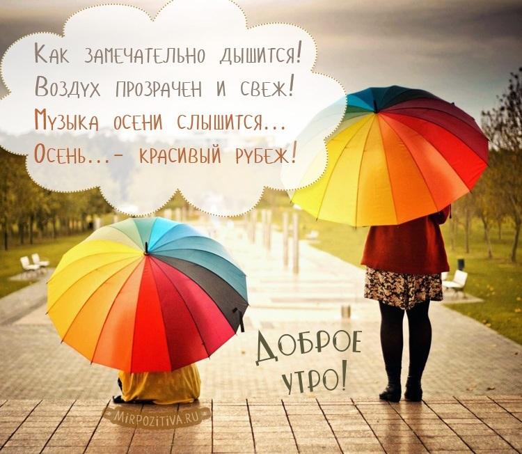 Доброе утро картинки дождь или с дождем для друзей (10)
