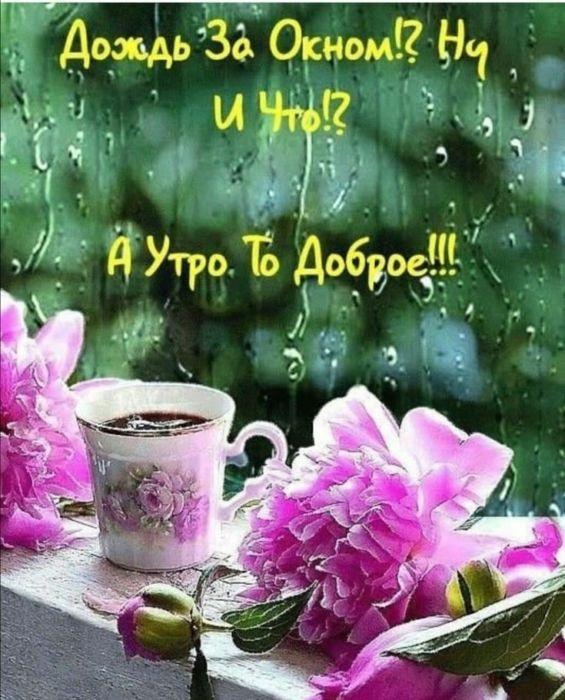 Доброе утро картинки дождь или с дождем для друзей (14)