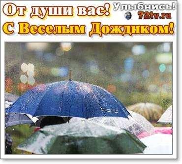 Доброе утро картинки дождь или с дождем для друзей (3)