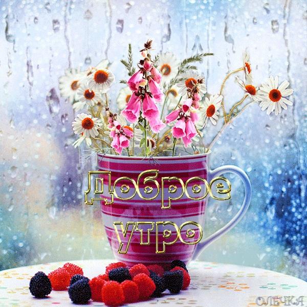 Доброе утро картинки дождь или с дождем для друзей (4)