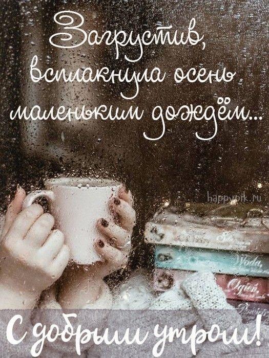 Доброе утро картинки дождь или с дождем для друзей (7)