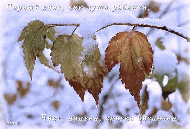 Первый снег картинки и открытки на данную тематику (11)
