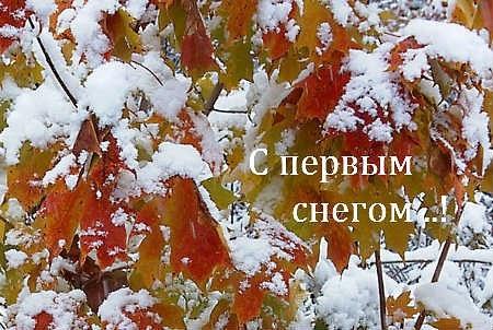 Первый снег картинки и открытки на данную тематику (18)