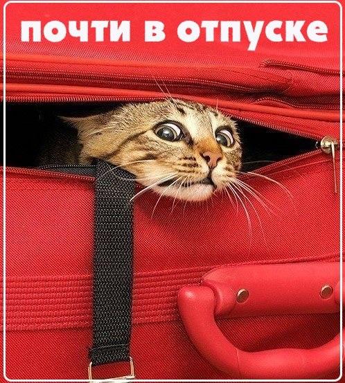Прикольные картинки Ура завтра отпуск с надписями, открытки (5)