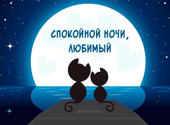 Спокойной ночи дорогой открытки и картинки (3)