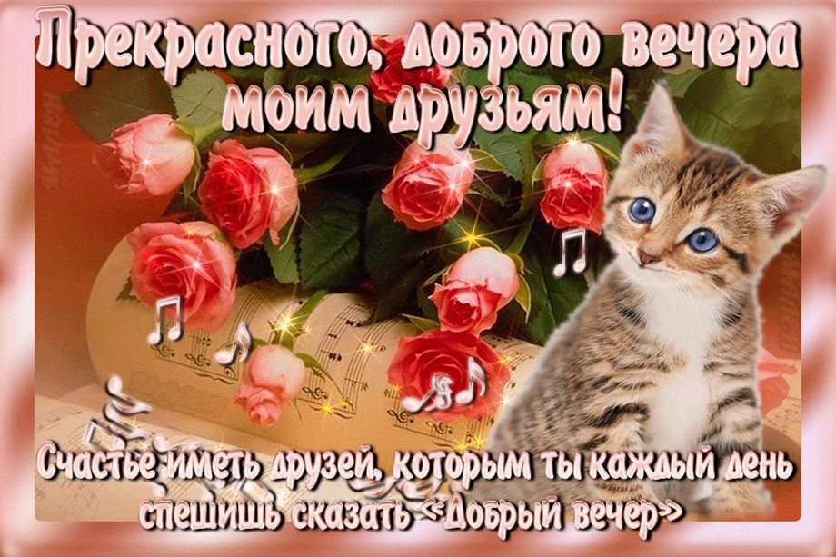 Доброго вечера друзья картинки и открытки (11)