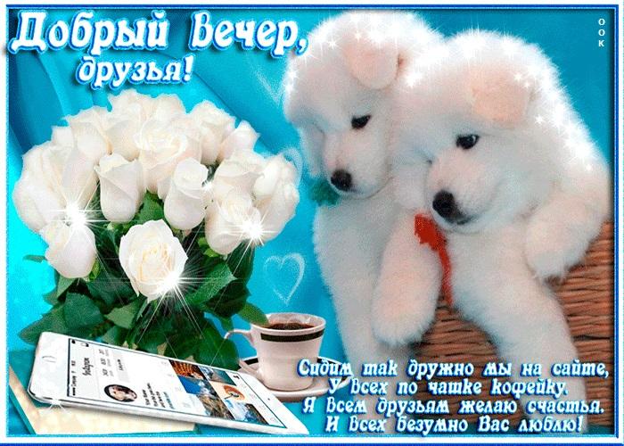 Доброго вечера друзья картинки и открытки (12)